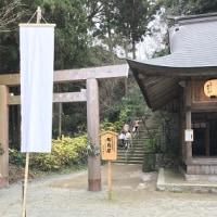 行ってきました桜井神社