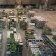 深夜の花卉市場、そして