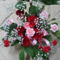8月26日 明日の誕生花・ゆかりの花 花言葉は?(*^O^*)☆