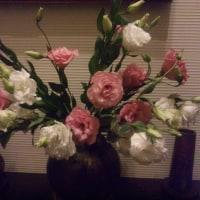 シャンソン歌手リリ・レイLILI LEY   シャンソン部屋の花達