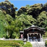 バイク日記その172 カワサキDトラッカーX  ミカンの咲く山探訪 奈良~有田市 往復250km