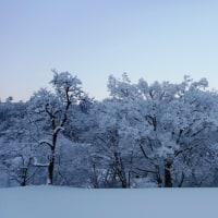 いきなり豪雪