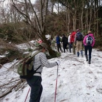 春の息吹の医王山を楽しみました。 ~石川県支部~