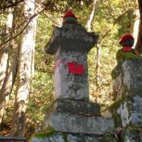 高尾山登山 写真日記