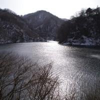 1月29日(土) 晴 寒さの底は来週?