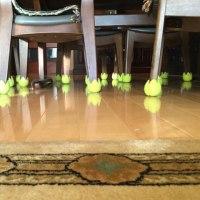 テニスボールのおかげ