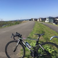 朝練 機材チェック 15km。 & 加瀬加奈子 200勝おめでとさん と お土産いただきました〜。