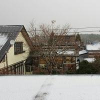 晴耕雨読日記 平成28年12月2日金曜日 私の農休日