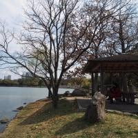 水と緑のオアシス 大濠公園 2