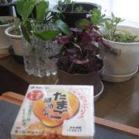 「たまご醤油たれ 納豆」