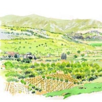 マリアの山からの景色  世界わがスケッチの旅