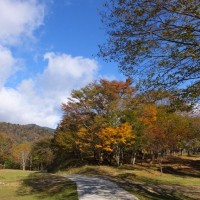 和佐又から大普賢を経て伯母谷覗きへ、下山は柏木道で柏木へ 2016年11月3日 その1