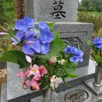 お墓詣りへ