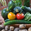 定休日に彩り添えるいただきものの新鮮野菜。
