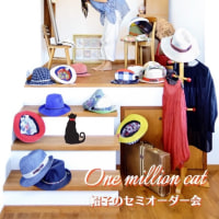 ネットで面白い帽子の収納方法が載ってました