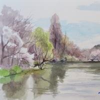 春の始まり 井の頭公園にて F(6)