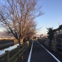 穏やかな初冬、あづみのサイクリング・ロードへ