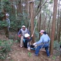 森林体験学習