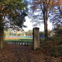 東京大学野球部関連のマル秘企画のマル秘取材