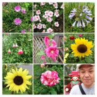 20130628花の美術館
