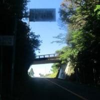 【第7話 鹿児島】鹿児島市街~知覧~池田湖