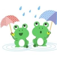 梅雨ですね~♪