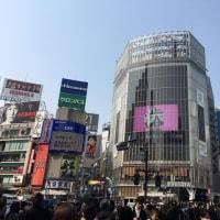 今日の渋谷・スクランブル交差点前