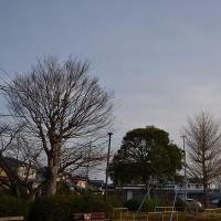 3月31日、午前6時過ぎの朝の空模様