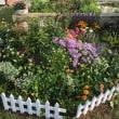 ブログ始めて1ヶ月、花壇完成から1ヶ月がたちました。