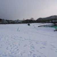 犬追跡&スキー 身体機能低下を実感