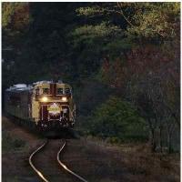 わたらせトロッコ列車-3