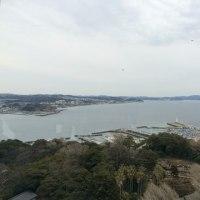 東京見物2日目~江ノ電に乗ったヨの巻~