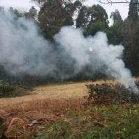 草を焼く煙[森へ行く道 <25>]