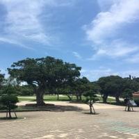 10年ぶりの沖縄