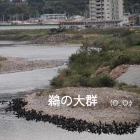 名古屋⇒神戸⇒博多