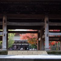鎌倉 円覚寺2