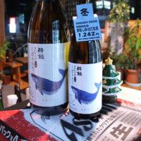 酔鯨 特別純米酒 しぼりたて生酒入荷。