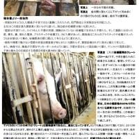 今日伊藤ハム豚虐待のチラシ印刷でヒロインに会った。