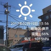 日差しは暖かいけど