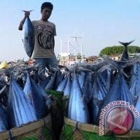 違法漁業の摘発でインドネシアの漁業が跳躍した (2)