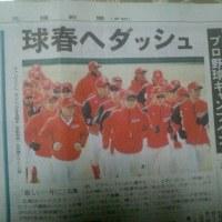 日本のプロ野球チームはキャンプイン!
