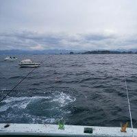 船フカセのグレ釣り