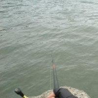 17.4.18(火)  チヌ釣り