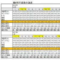 今朝(1月15日)の東京のお天気:晴れ、1月の温度統計、(1月の作品:祈願の坐像)