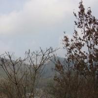2 長者山(571m:安芸区)登山  登山口への路にて