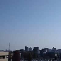 今朝の宮崎市