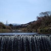 春遅き伊豆の渓
