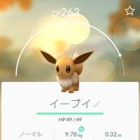 【ポケモンGO】イーブイ