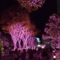 2016.12.02 新宿: サザンテラスのイルミネーション