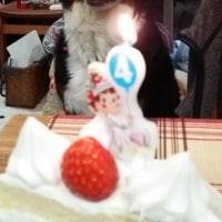 くるみの4歳の誕生日(3月だけど…)